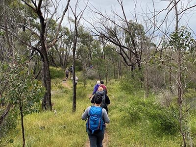 Clare-walking-tour-for-women-wellness-walks-clare-valley-Spring-Gully-hiking-trail