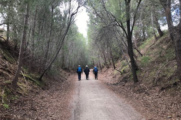 Clare-walking-tours-wellness-walks-Clare-Valley-womens-walking-group-hiking-trail