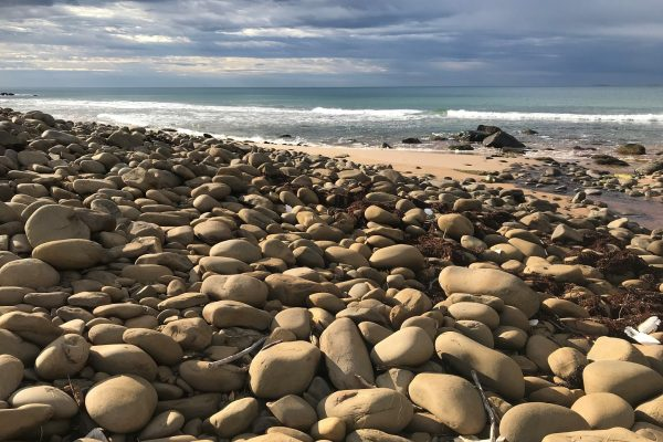 Fleurieu-Peninsula-South-Australian-walking-tours-Heysen-Trail-pebbles-Boat-Harbour-Beach